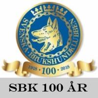 sbk100.jpg